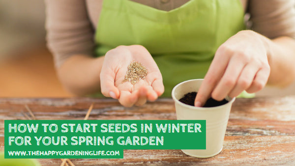 How to Start Seeds in Winter for Your Spring Garden