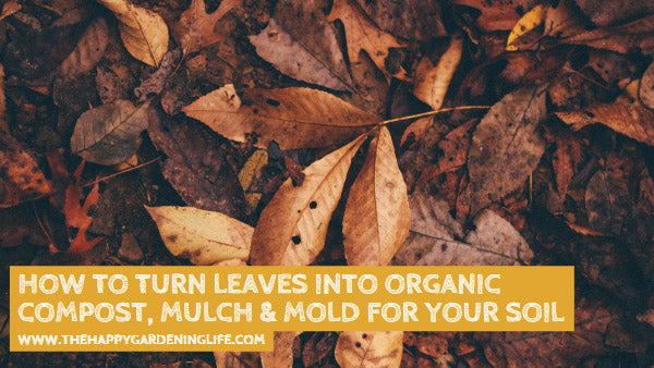 How to Turn Leaves Into Organic Compost, Mulch & Mold for Your Soil