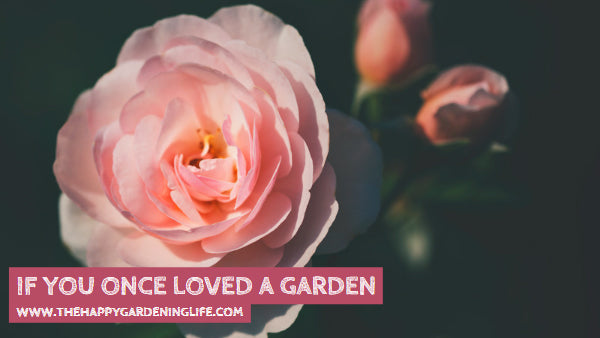 If You Once Loved A Garden
