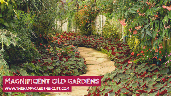 Magnificent Old Gardens