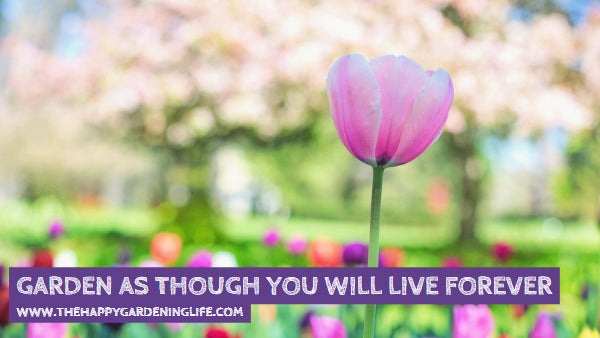 Garden As Though You Will Live Forever