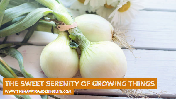 The Sweet Serenity Of Growing Things