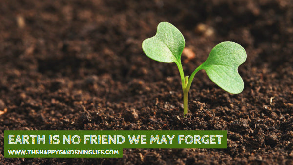 Earth Is No Friend We May Forget