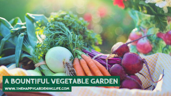 A Bountiful Vegetable Garden