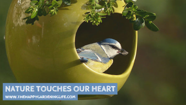 Nature Touches Our Heart