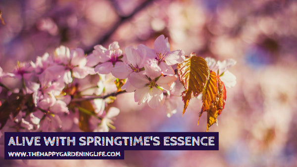 Alive With Springtime's Essence