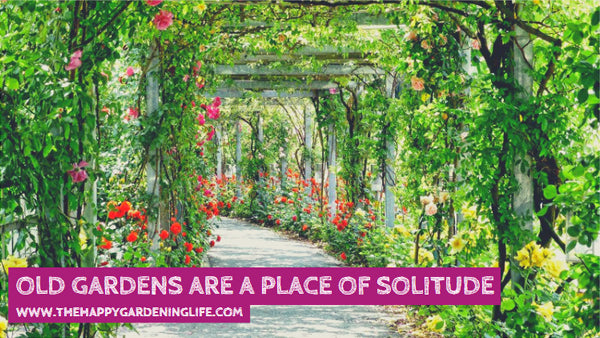 Old Gardens Are A Place Of Solitude