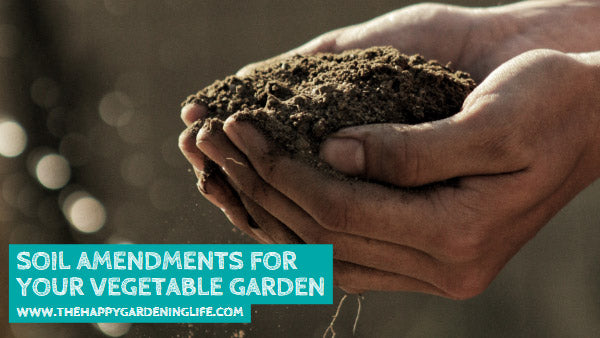 Soil Amendments for Your Vegetable Garden