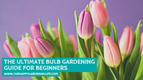 The Ultimate Bulb Gardening Guide for Beginners