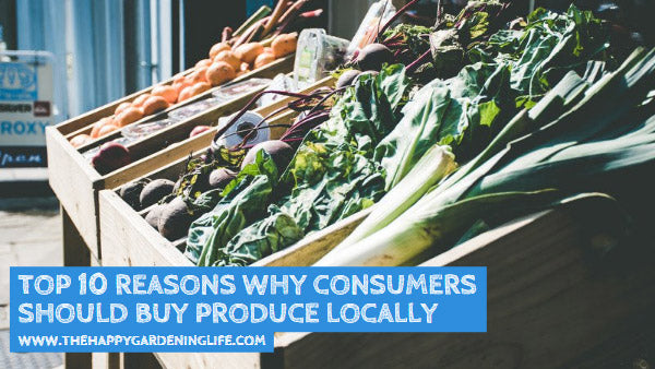 Top 10 Reasons Why Consumers Should Buy Produce Locally