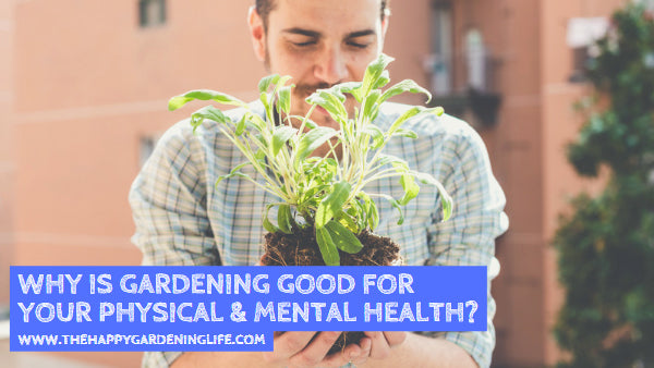 Why is Gardening Good for Your Physical & Mental Health?