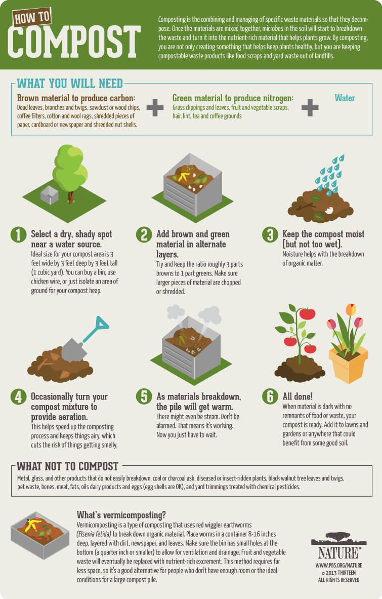 composting process - image