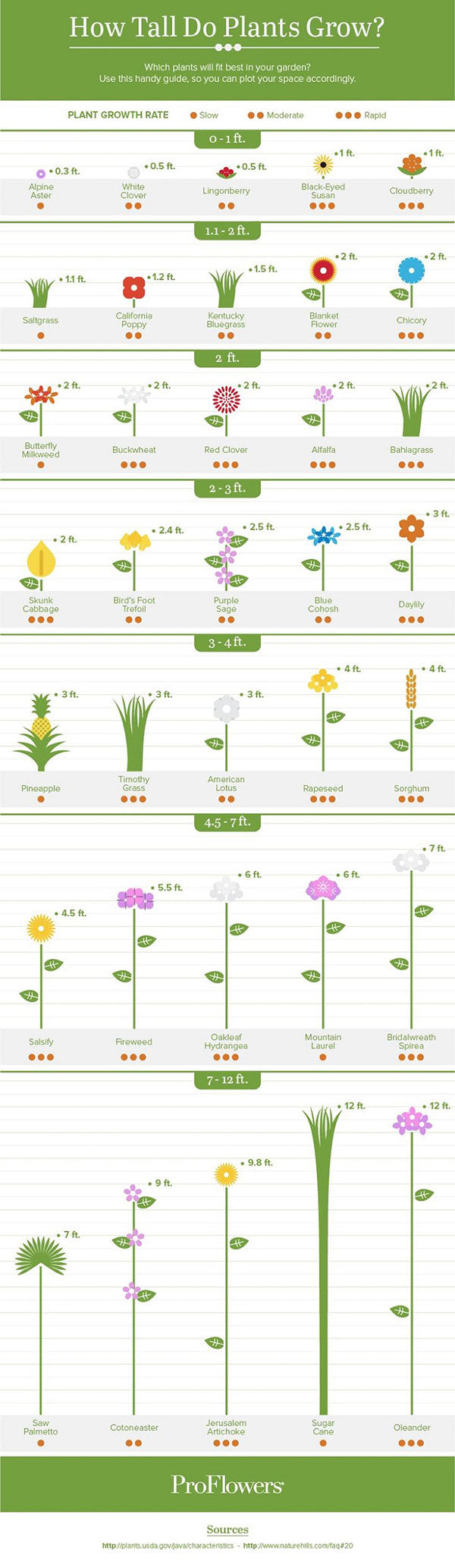 plant-growth-guide