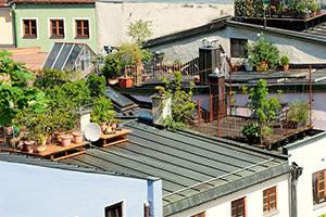 Rooftop Vegetable Gardening 5 Quick Tips To Remember The Happy