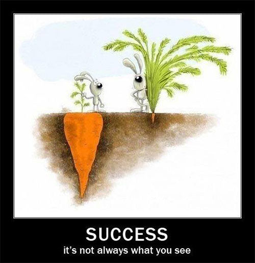 success-is-not-always-what-you-see