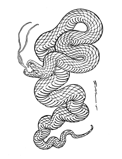 Drawn to Scale - Compendium Vipera
