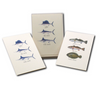 Saltwater Fish Assortment Boxed Notes