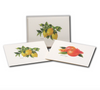 Citrus Boxed Notes Assortment