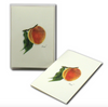 Peach Boxed Notes