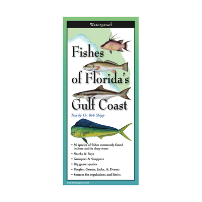 Fishes of Florida's Gulf Coast