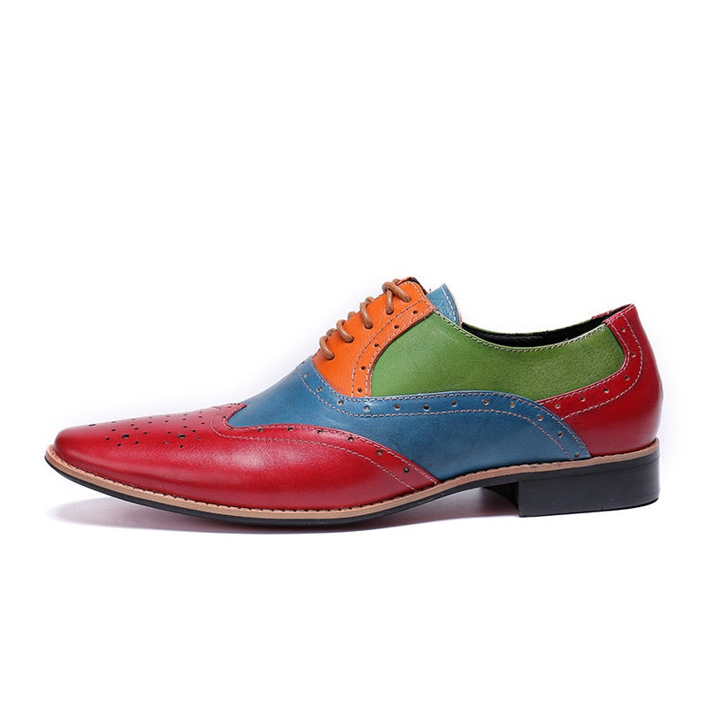 Mixed Multi Colors Men Perforated Oxford Shoes with Wingtip