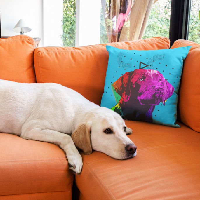 Decorative Throw Pillows Home Decor For Dog Lovers
