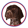 Browse our German Shorthaired Pointer Collection
