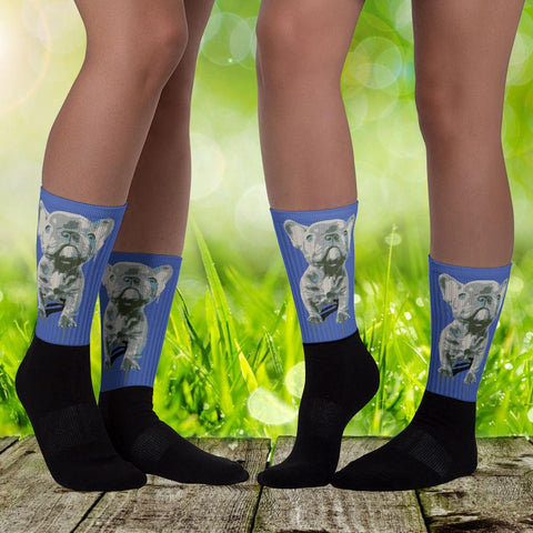 Blue Frenchie Celebration - Black Foot Socks