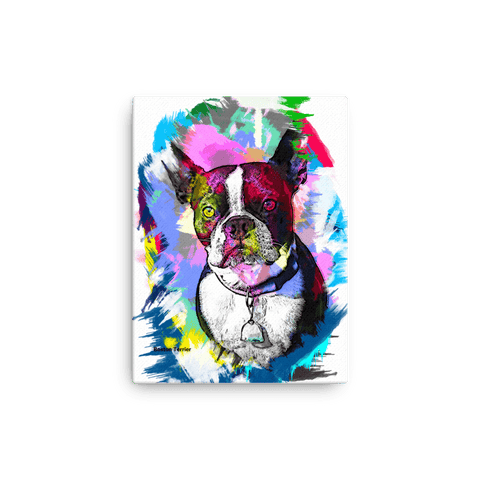 Boston Terrier Artistic Photo Art Canvas - Colorful 12x16