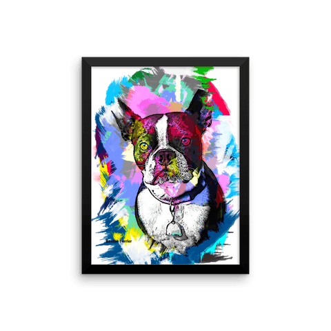 Boston Terrier Artistic Photo Art Framed Poster - Colorful 12x16