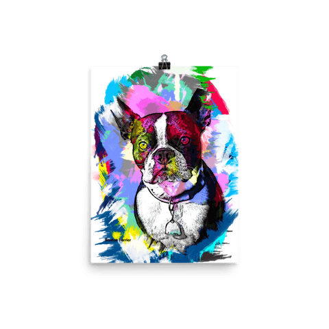 Boston Terrier Artistic Photo Art Poster - Colorful 12x16