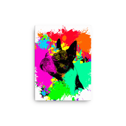 Boston Terrier Colorful Splash Paint Canvas