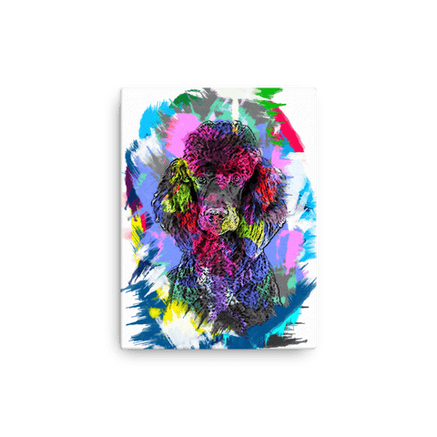 Poodle Artistic Photo Art Canvas 12x16