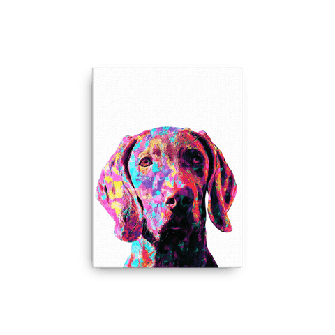 Weimaraner Terrier Colorful Painting Canvas 12x16
