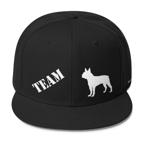 TEAM Boston Terrier - Wool Blend Snapback