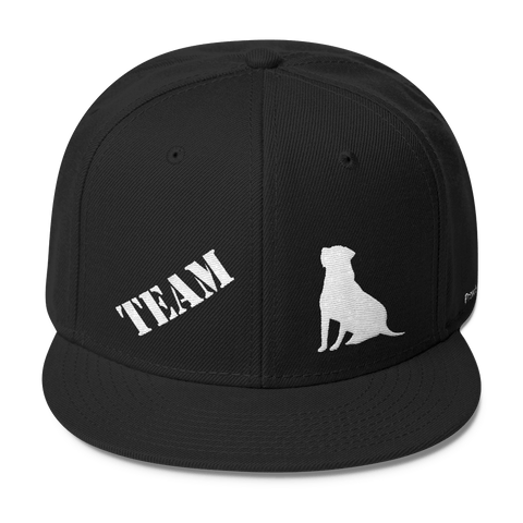 TEAM Labrador Retriever - Wool Blend Snapback