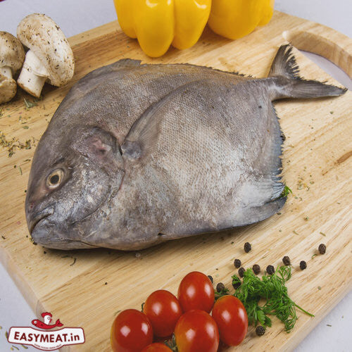 "<a href=""http://easymeat.in/products/black-pomfret-halwa-1-kg"" target=""_blank"" title=""Buy fresh Black Pomfret in Pune"">Black Pomfret</a> - A bliss for seafood lovers"