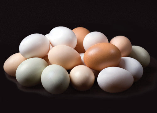 Desi Eggs - easymeat - home delivery pune - Fresh Chicken