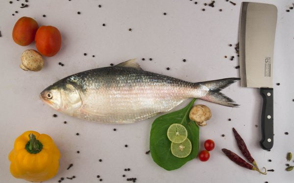Hilsa - Ilish - Bhing - Palla - easymeat - home delivery pune