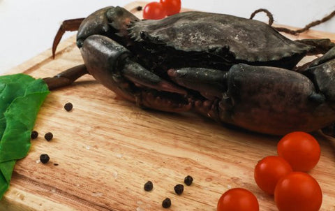 Sea Water - Mud Crab - easymeat - 1