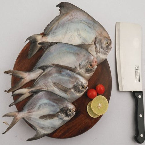 Silver Pomfret - Fresh Seafood - EasyMeat - Home Delivery -