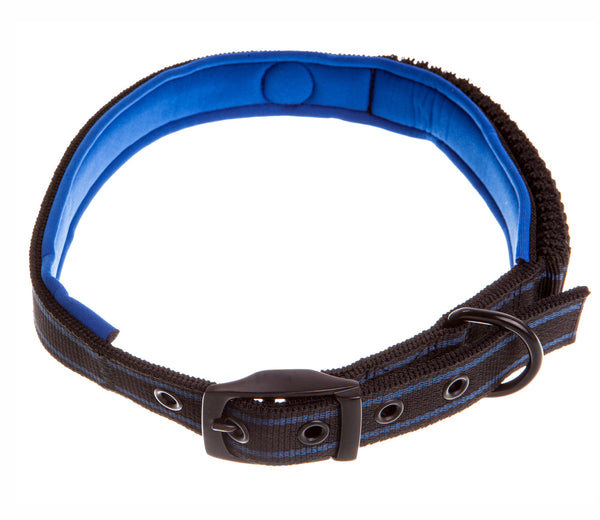 black and blue bungee dog collar with blue padding
