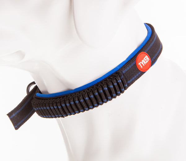 dog mannequin wearing a black and blue bungee dog collar with red and white tyker logo
