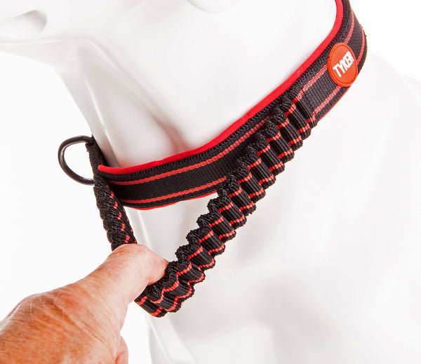 finger pulling a bungee black and blue dog collar with red and white tyker logo