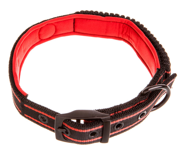 black and red bungee dog collar with neoprene red padding