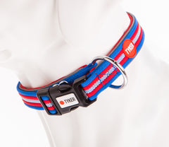 dog mannequin wearing multicolored striped dog collar with red padding and tyker branded clip
