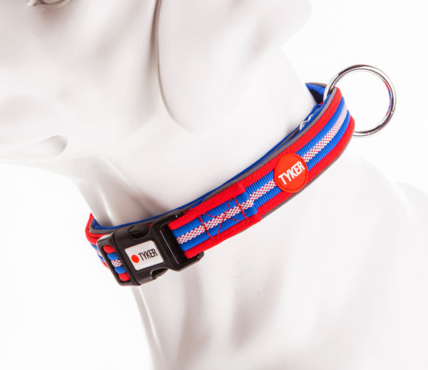 dog mannequin wearing a multicolored striped dog collar with red padding and tyker branded clip