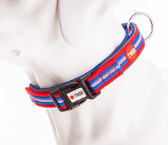 dog mannequin wearing multicolored striped dog collar with blue padding and tyker branded clip
