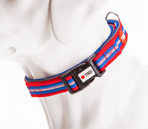 dog mannequin wearing a multicolored striped dog collar with blue padding and tyker branded clip