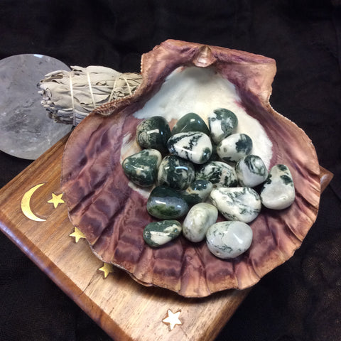 Tree Agate - Goddess I AM